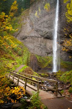 Latourell Falls in the Columbia River Gorge. Photo by Luke Graham.