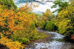 Autumn Rain--Three Forks, Williams River, Monongahela National Forest by Thomas R Fletcher Photography