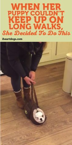 When Her Puppy Couldn't Keep Up On Long Walks, She Decided To Do This!