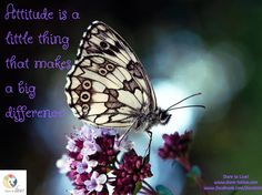 Attitude is a  little thing  that makes  a big  difference / Dare to Live! www.dare-tolive.com www.facebook.com/daretolive2 Dares, Little Things, Personal Development, Attitude, Reflection, Facebook, Space, Live, How To Make