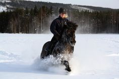 Horseback riding in the snow Horseback Riding, Goth, Snow, Colors, Gothic, Goth Subculture, Human Eye, Colour, Horse Riding