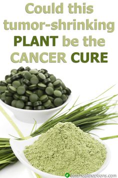 No doubt the anti-cancer properties of this plant will become medicine eventually--but there's no reason you should have to wait to reap its protective benefits...