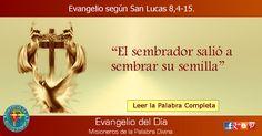 MISIONEROS DE LA PALABRA DIVINA: EVANGELIO - SAN LUCAS - 8,4-15