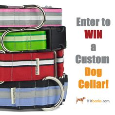 LAST CHANCE! Enter to win a custom If It Barks #dog collar! Ends 11/8.  Good luck! #dogs #giveaway Handmade Dog Collars, Dog Collars & Leashes, Collar And Leash, Printing On Fabric, Giveaway, Dogs, Fabric Printing, Pet Dogs, Doggies