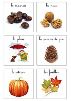 imagier automne Plus French Teaching Resources, Teaching French, Art Mat, Petite Section, French Education, French Expressions, Autumn Activities For Kids, Language And Literature, Maria Montessori
