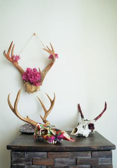 "I wonder if that deer was this fabulous in life. Gay deer walks out of a bar. ""God, I can't believe I blew 50 bucks in there. Deer Skulls, Cow Skull, Animal Skulls, Skull Art, Skull Crafts, Moose Antlers, Colorful Skulls, Antler Art, Skull And Bones"