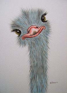 Silly Ostrich watercolour | by serene04