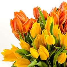 Bunch of spring tulips flowers colorful misc Tulips Flowers, Graphic Prints, Flora, Objects, Bouquet, Orange Plant, Spring, Nature, Plants