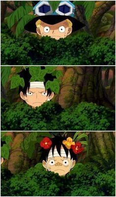"Sabo: ""Be the leaves..."" Ace: ""Be the leaves....."" Luffy: ""Be the flowers..."" I love their attempt to camouflage. It's even funnier because you can kinda tell what type of people they are just by this. XD    WAIT ACE ISNT THAT POISEN IVY?!"