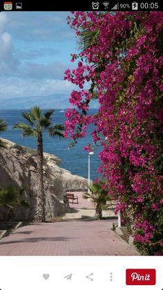 Costa Adeje. Canary Islands.