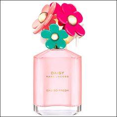 Si te ha gustado:   Daisy Eau So Fresh Delight – Floral