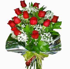 Docena de Rosas Rojas con Paniculata
