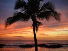 Take me back to Hawaii  <3