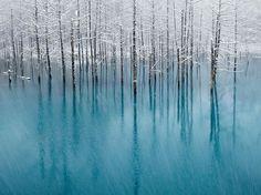 Awesome Blue pond , Hokkaido Japan.   Most Beautiful Pages