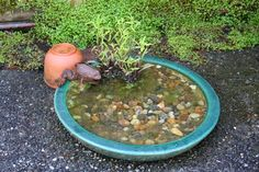 Birdbaths, shallow dishes, or butterfly puddling areas are simple to create and needn't take much time or money. Shallow dishes can be a great spot for birds to bathe and honeybees to drink (set a few rough-textured stones of varying sizes inside so hone