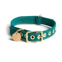 Loving everything by Found My Animal, especially this chic teal collar