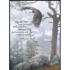 """""""They that wait upon the Lord shall renew their strength; they shall mount up with wings as eagles; they shall run and not be weary; they shall walk and not be tired."""" - Isaiah Teach me Lord. teach me Lord, to wait! Bible Verses Quotes, Bible Scriptures, Scripture Cards, Faith Quotes, Wait Upon The Lord, Bibel Journal, Encouragement, Favorite Bible Verses, Christen"""