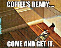Cafeaua e gata!