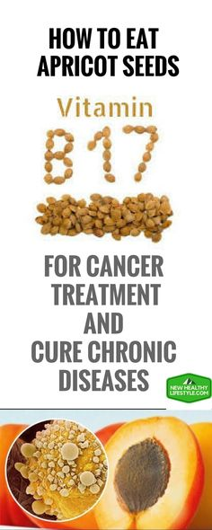 How To Eat Apricot Seeds (Vitamin Or Laetrile) For Cancer Treatment And Cure Chronic Diseases – New Healthy Lifestyle Clean Eating Vegetarian, Healthy Eating, Natural Cures, Natural Health, Vitamine B17, Health Tips, Health And Wellness, Health Care, Apricot Seeds