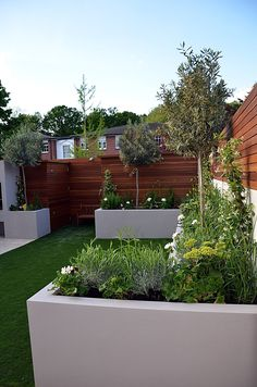 like the white containers against the brown fence (modern garden designer streatham balham clapham london) Modern Backyard Design, Back Garden Design, Contemporary Garden Design, Backyard Garden Design, Modern Landscaping, Backyard Landscaping, Back Gardens, Small Gardens, Outdoor Gardens