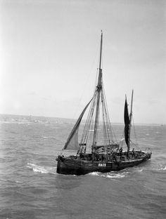 The Brixham trawler 'Provident', built 1924, photo William Pillar, Brixham