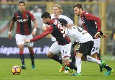 Blerim Dzemaili # 31 of Bologna FC in action during the Serie A match between Bologna FC and US Citta di Palermo at Stadio Renato Dall'Ara on November 20, 2016 in Bologna, Italy.