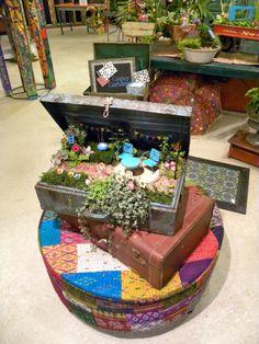 Suitcase Fairie garden