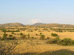 Pilanesberg Wildlife Camping Safari - 2 Days North West Province, Morning Activities, Wildlife Safari, Game Reserve, African Art, National Parks, Camping, Tours, Adventure