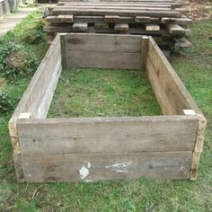 Skip timber raised bed - Really good veg growing site