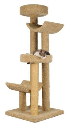 Molly and Friends Step Stool Sleeper Premium Handmade 4Tier Cat Tree with Sisal Model 2323 Beige -- More info could be found at the image url. (This is an affiliate link and I receive a commission for the sales)