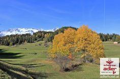 Herbstlandschaft in Nauders am Reschenpass Winter, Country Roads, Mountains, Nature, Travel, Fall Landscape, Woodland Forest, Summer, Winter Time