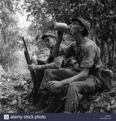 A British Anti Terrorist Jungle Patrol In Malaya In 1959 Stock Photo, Royalty Free Image: 20062959 - Alamy