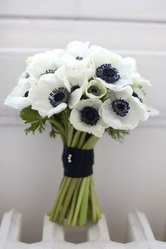 WHITE ANEMONE - Getting married in March? See our seasonal flowers board for a full list of flowers that are available for florists to buy in March for a Spring wedding. Whether you are planning a romantic, wild and natural bouquet or bright and vibrant table centrepieces - our month by month boards cover every possibility for every month be it Winter, Autumn or Summer! xx #beautifulflowersbouquet