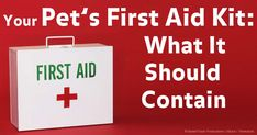 Having a first aid kit for your pet is something you should be concerned about; here are some recommendations. http://healthypets.mercola.com/sites/healthypets/archive/2013/11/04/pet-first-aid-kit.aspx