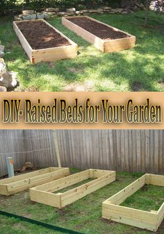 We made three 8x3 raised beds from pressure-treated wood. Pressure-Treated is cheap and easy to use. We put three raised beds together in an hour so it was