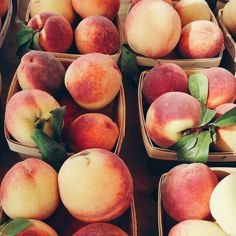 COTM | January 2017 | Sweet, Juicy & Delicious: 7 OMG Health Benefits of Peaches