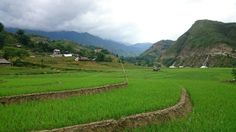 Getting from Hanoi to Sapa by Bus