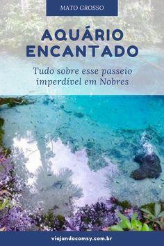 Conheça tudo sobre o Aquário Encantado, passeio imperdível para quem visita Nobres, no Mato Grosso! http://viajandocomsy.com.br/aquario-encantado-bom-jardim-nobres-mato-grosso/ #nobres #viagem