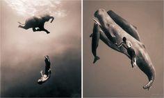 Comunica con E: GREGORY COLBERT, el fotógrafo de la simbiosis hombre-animal