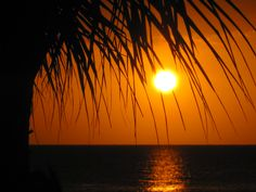 Sunset at Couples Swept Away - Negril, Jamaica