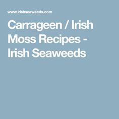 Carrageen / Irish Moss Recipes - Irish Seaweeds