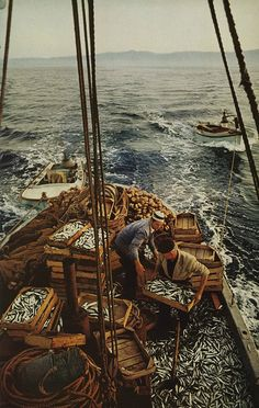 Bounty by petercat.harris, via Flickr  National Geographic, 1970