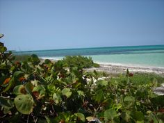 """Playa Santa Lucia, Cuba we chose not the easy way to get here, so be careful with the """"carretera"""" you'd like to drive"""