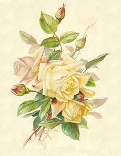 Lilac & Lavender: Vintage Roses Printable
