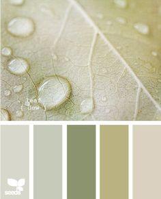 leaf dew - kitchen