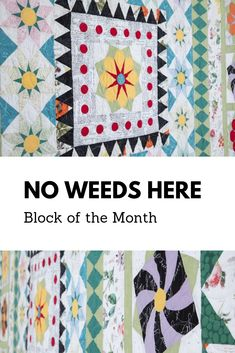 Vibrantly fresh and richly printed fabric from the No Weeds Here collection by Hoffman Fabrics is the star of our latest block of the month. Along with seven instructional videos, this 12-month program leaves you with a fresh and fun queen-size quilt and a master of techniques used to make it.