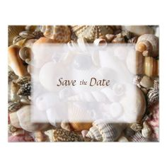 >>>Low Price          	Tropical Seashells, Small Save the Date Cards Invitations           	Tropical Seashells, Small Save the Date Cards Invitations so please read the important details before your purchasing anyway here is the best buyReview          	Tropical Seashells, Small Save the Date ...Cleck Hot Deals >>> http://www.zazzle.com/tropical_seashells_small_save_the_date_cards_invitation-161769793870420255?rf=238627982471231924&zbar=1&tc=terrest