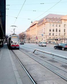 What's your favorite tram line? 🚃 #vienna_city #inspring_city . 📷 by @octalita_ . #vienna #wien #austria #österreich #europe #tram Vienna, Street View, City, Instagram, Cities