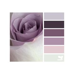 design seeds | for all who ♥ color ❤ liked on Polyvore featuring backgrounds, design seeds, color palettes, colors and color inspiration