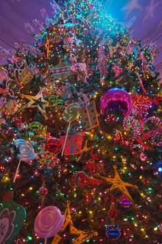 Croatia christmasound the world pinterest sciox Image collections